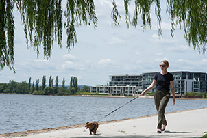 Woman walking her dog.