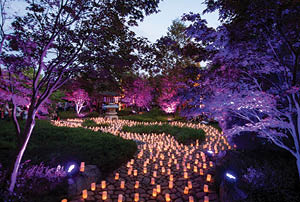 The Nara Candle Festival at Canberra Nara Peace Park in Lennox Gardens.