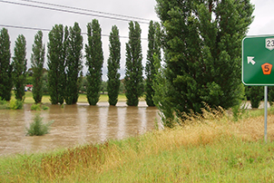 A flood in Canberra near a street sign and trees.