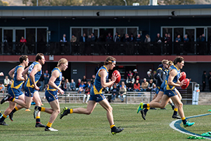 Players during an AFL match at Phillip Oval