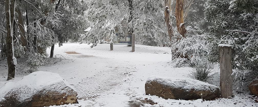 Snow at Namadgi, Canberra