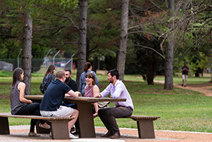 A group of people sitting at a table in Haig Park.