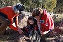 thumb-LandCare-Volunteers.jpg