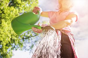 Woman watering her garden.