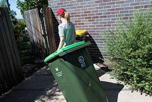 A woman bringing in her green after it has been collected.