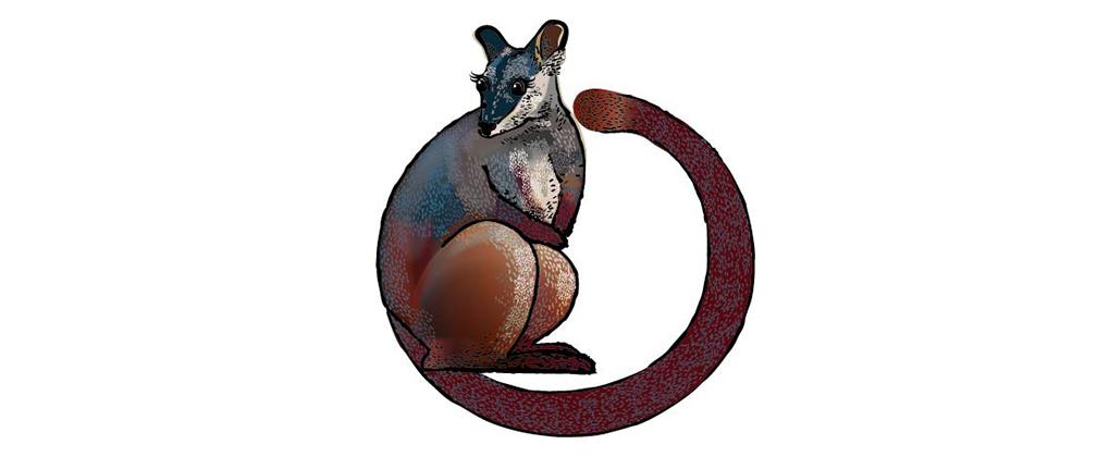 ACT mammal emblem
