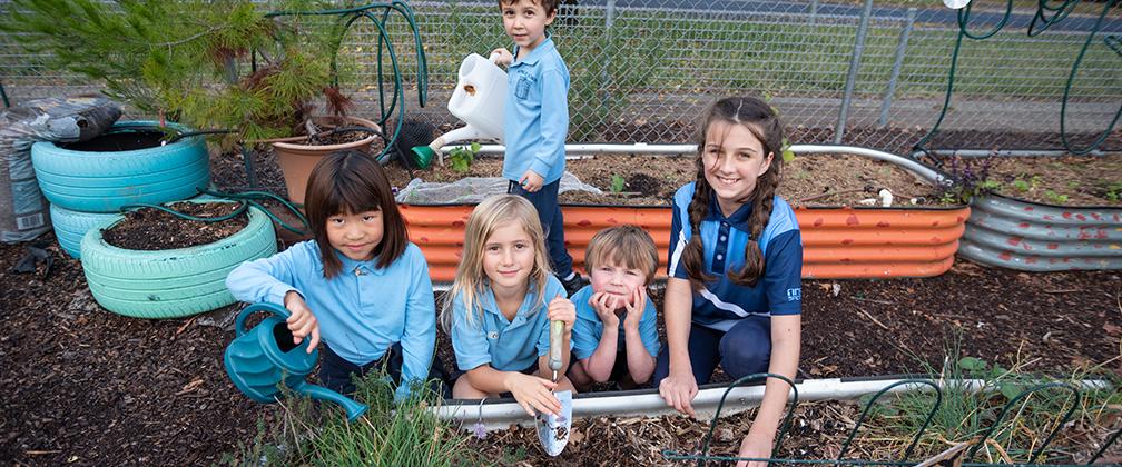 Ainslie School students taking care of the school garden