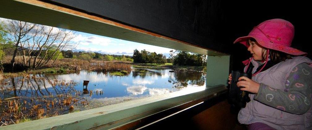 Girl looking at Jerra wetlands